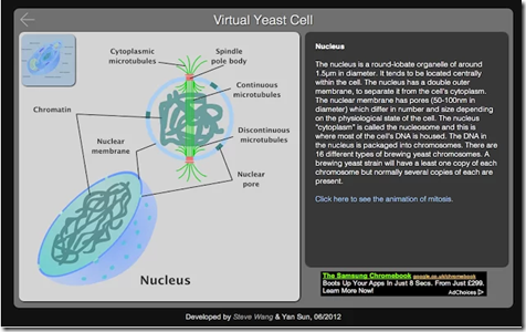 10 Google Best Chrome Extensions for Biology Students