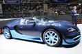 Bugatti-Veyron-GS-Vitesse-6