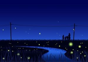 Fireflies12