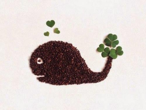 arte grãos café 24