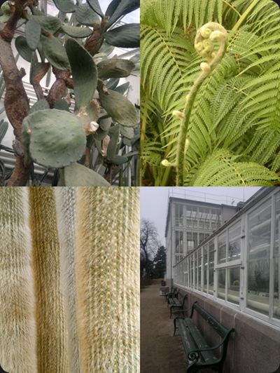 botanisk_hage