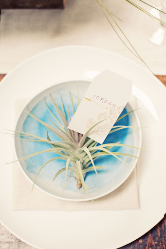Seating cards sported floral illustrations and rested in air plants set inside a watercolors-inspired bowl.
