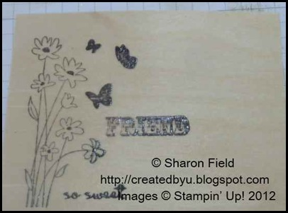 stamp with craft ink, emboss with clear ep