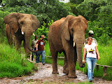 South Africa - 067.JPG