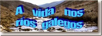 a vida nos rios galegos
