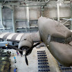 Douglas C-47 Skytrain at the National World War II Museum