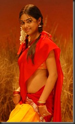 meera_chopra_latest_photoshoot_pic_in_saree