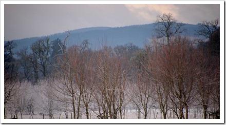 17 Jan 12 17-01-2012 11-00-51