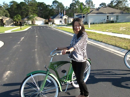 Tampa beach cruiser bicycle