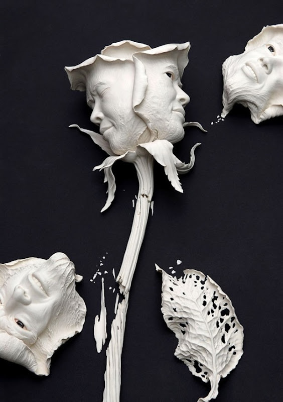 johnson tsang 1