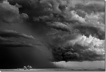 Mitch-Dobrowner_Trees-Cloudspicture15