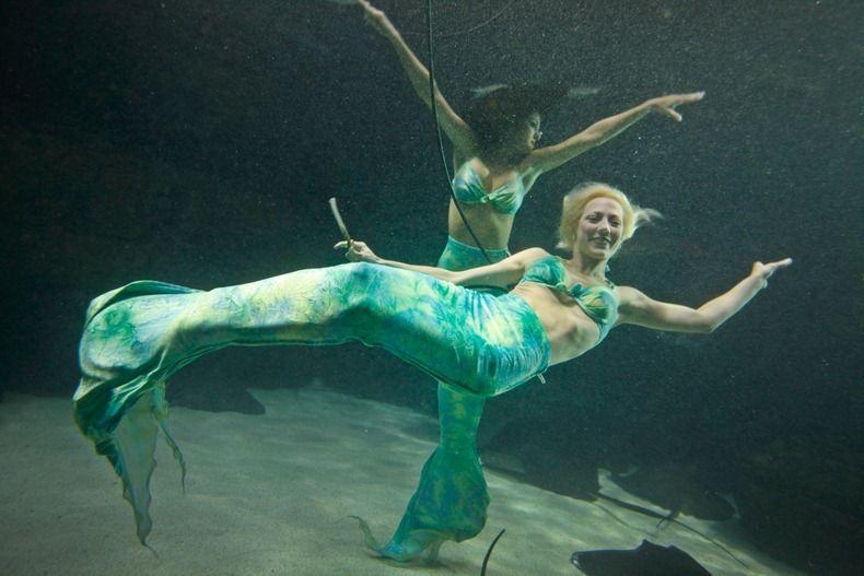 weeki-wachee-mermaids-11