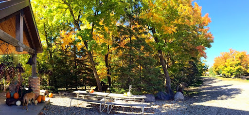 Panoramic view from lodge entrance. Hudson checking out pumpkins