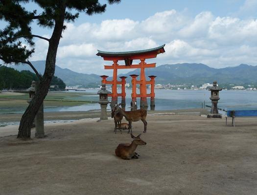 japão- ilha de miyajima - Glória Ishizaka 14