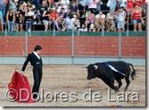 ©Dolores de Lara (91)