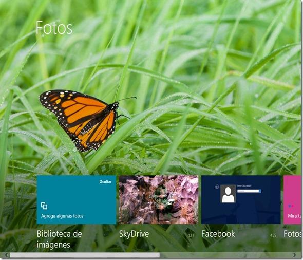 windows804