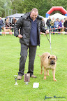 20100513-Bullmastiff-Clubmatch_31073.jpg
