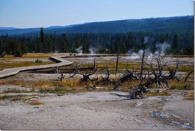 08-11-14 A Yellowstone National Park (192)