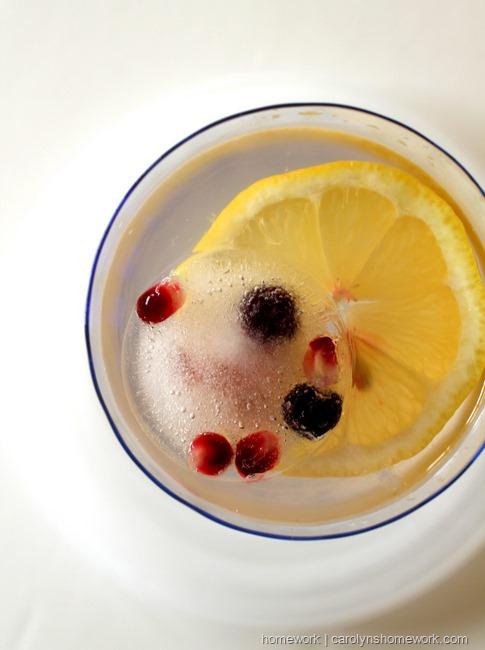 Pomegranate Blueberry Ice by homework   carolynshomework.com