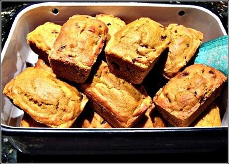 NTOODay Pumpkin Bread picniked (Custom)