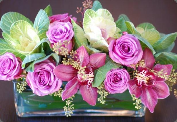 19037_272029125956_7398836_n flora bella