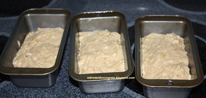 Banana Apple Bread - mixed - ready for oven B