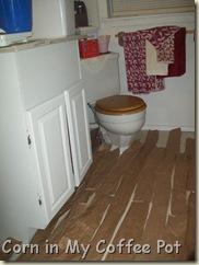 Bathroom In Progress 011