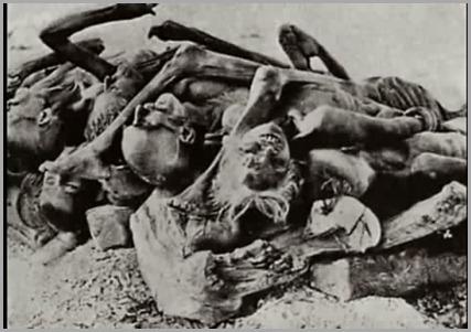 Mortos pela fome na ndia