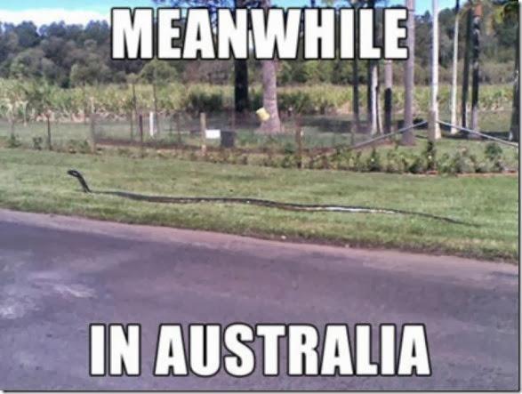 meanwhile-australia-21