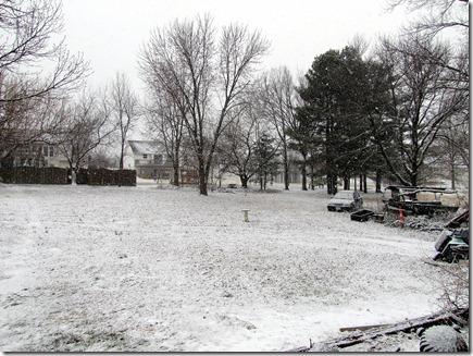 Snow02-13-12a