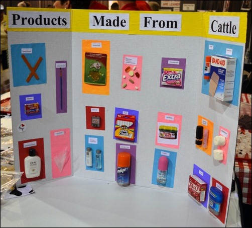 products from cattle