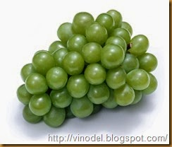 Советы по удобрению винограда