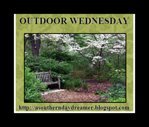 Outdoor-Wednesday-logo_thumb4_thumb1_thumb[1]