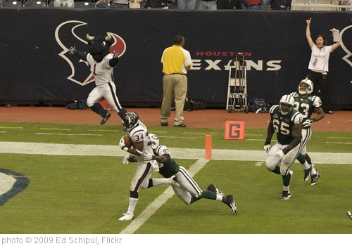 'the one texan's touchdown' photo (c) 2009, Ed Schipul - license: http://creativecommons.org/licenses/by-sa/2.0/