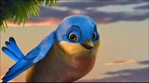 18 l'oiseau