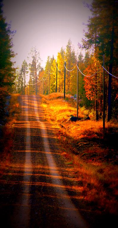 landsväg i överkalix