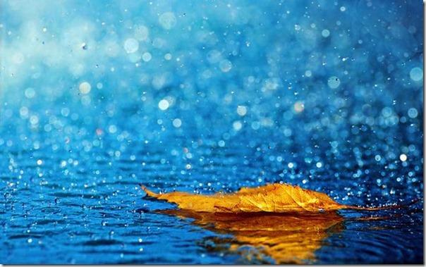 Lindas fotos da chuva (2)