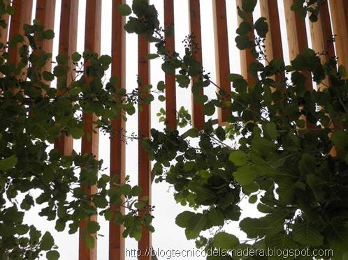 pergola-madera-laminada-detalle (7)