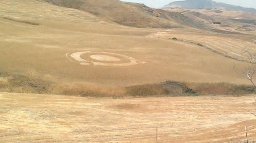 i cerchi di grano con il logo Ubuntu