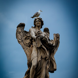 Stratue on a Rome Bridge by Dale Mellor - Buildings & Architecture Statues & Monuments ( angel, statue, rome, rome bridge statues, angel statue, itialy,  )