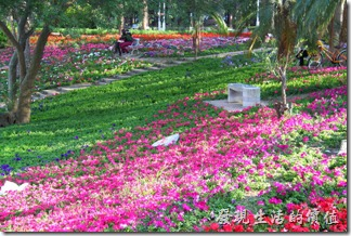 台南-2013台南公園百花祭64