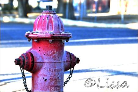 firehyrantwatermark