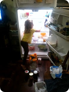 Elaine Cleaning the Fridge