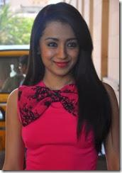 Actress Trisha @ Endrendrum Punnagai Movie Success Meet Stills