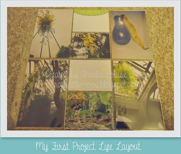 PROJECT LIFE5