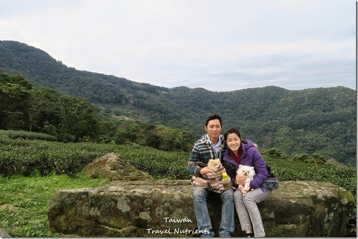 三峽熊空茶園 (35)
