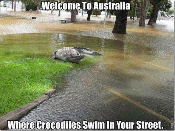 meanwhile-australia-014