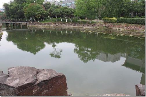 昆山城市公園,這邊的池水基本上連接著縱橫的水陸溝渠,所以還不至於變成一攤死水,但今年雨水變少,有些部份甚至有乾涸的跡象。