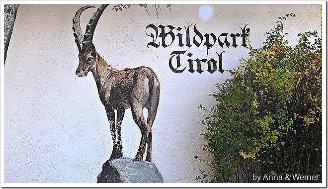 2011_10_30_056_WildparkAurich