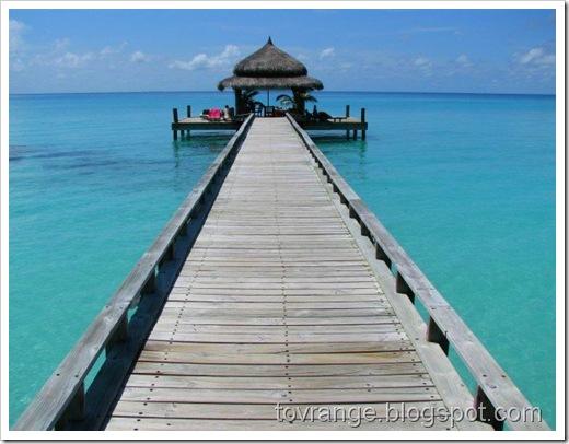 ...som her på Maldivene, for eksempel...